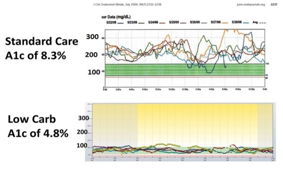Blood Glucose Comparison High Carb Vs Low Carb
