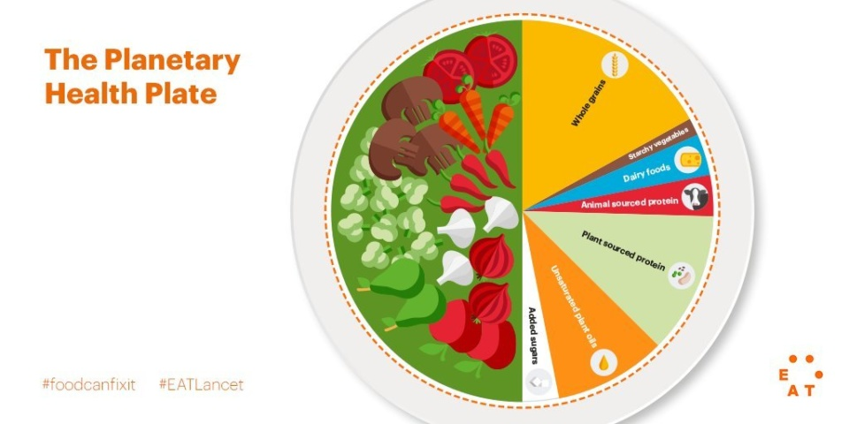 The Planetary Health Plate